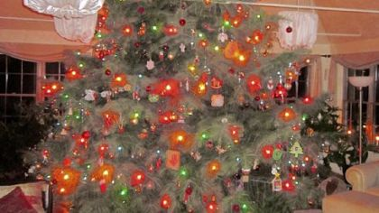 David Pecharka of Moon has a live Christmas tree that is 15 feet tall and more than 12 feet wide at the base.