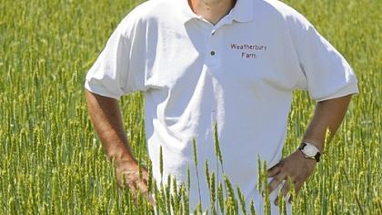 Nigel Tudor in a field of Red Fife wheat at his family's Weatherbury Farm in Independence Twp., Washington County.