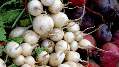 White Hakurei turnips and beets are for sale.
