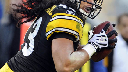 Steelers safety Troy Polamalu.