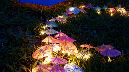 Hillside decorations at night, by Sean Gray International.