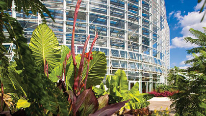 The Tropical Forest Conservatory, the second phose of the Phipps expansion, overlooks the Center for Sustainable Living.