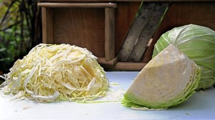 Cabbage with a shredder that belonged to Freda Vogelsberger&#039;s father and still works fine. Plus, unlike on some new models, its blades can be sharpened.
